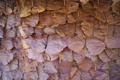 Dak van het patroon het droge blad Stock Foto