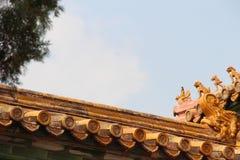 Daken en ornamenten van de Verboden Stad 5 royalty-vrije stock afbeeldingen