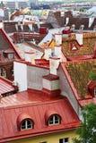 Daken van de oude stad, Tallinn, Estland Royalty-vrije Stock Afbeelding