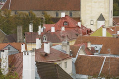 Daken van de oude stad van Tallinn royalty-vrije stock afbeelding