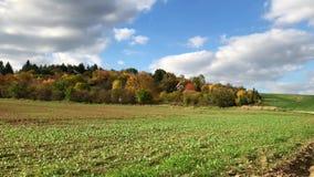 Daken van de zomerhuizen in groen bij de kleurrijke warme herfst stock video