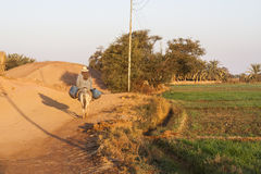 Dakhla,埃及- 2006年12月25日:农夫对f的骑马驴 免版税库存图片