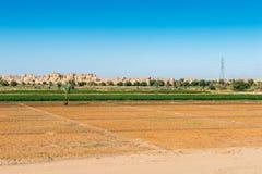 Dakhla oasis, Egypt Royalty Free Stock Photography