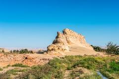 dakhlaegypt oas Royaltyfri Fotografi