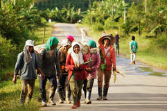 DAKLAK,越南9月4日 库存图片