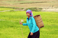 Farmer carry papoose on the road. DAKLAK, VIET NAM. Woman wear headscarf, carry papoose (gui) step on the way with stick on hand at countryside. December 30 Royalty Free Stock Images