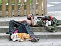 Dakloze mens en zijn hond stock afbeeldingen