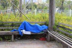 Dakloze mensenslaap in het park stock afbeeldingen