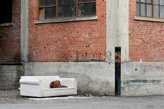 Dakloze woonkamer stock afbeeldingen
