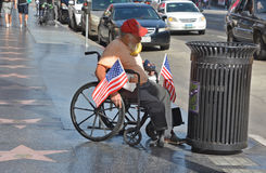 daklozen stock fotografie