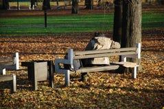 Daklozen in het park stock foto's