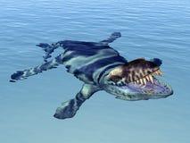 Dakosaurus Stock Image