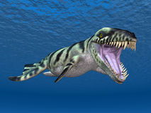 Dakosaurus Stock Image