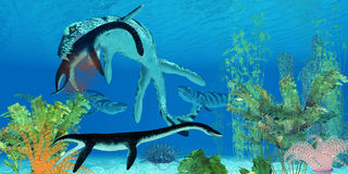 Dakosaurus Marine Reptile Royalty Free Stock Photography
