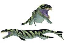 Dakosaurus on White Stock Photography