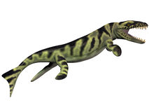 Dakosaurusprofiel Royalty-vrije Stock Foto
