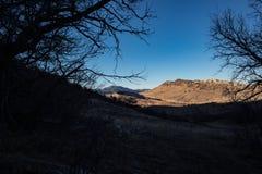 Dakota hogback i solen för sen eftermiddag som inramas av avlövade vinterträd royaltyfria foton