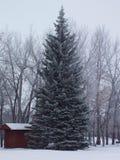 dakota norr snowscene Royaltyfria Bilder