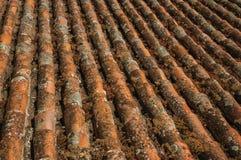 dakspanen op dak door mos en korstmossen wordt behandeld dat stock foto