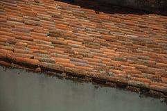 dakspanen op dak door mos en korstmossen wordt behandeld dat royalty-vrije stock afbeeldingen