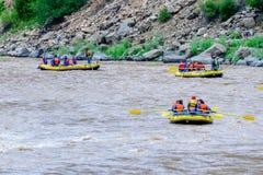 Daksparren op de rivier Royalty-vrije Stock Foto