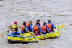 Daksparren op de rivier Royalty-vrije Stock Afbeelding