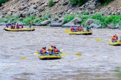 Daksparren op de rivier Royalty-vrije Stock Fotografie