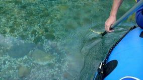 Daksparrenpeddel door water - Voorraadvideo stock footage