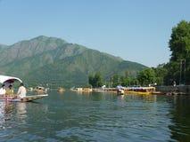Dal湖,斯利那加,克什米尔 免版税库存照片