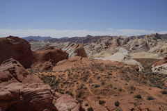 Dal av branddelstatsparken (Nevada, USA) arkivfoton