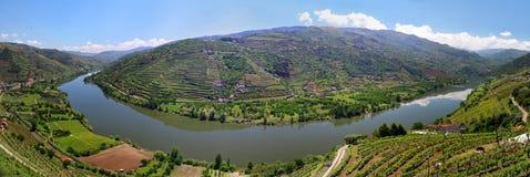 Dal av floden Douro med vingårdar nära Mesao Frio Portugal Royaltyfri Fotografi