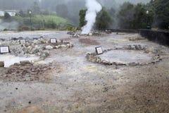 Dal av geysers på ön av Sao Miguel, Azores royaltyfria bilder