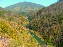 Dal av Oregon Arkivfoton