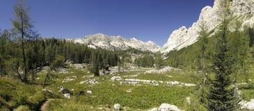 Dal av sju Triglav lakes i Julian Alps Royaltyfria Foton