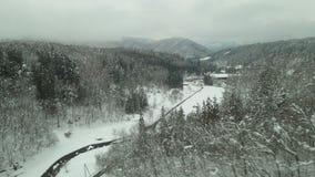 Dal av snö för vit jul Royaltyfria Bilder
