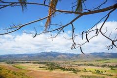 Dal av Sugar Mills i central Kuba Arkivfoton