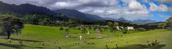 Dal av templen Memorial Park, Oahu, Hawaii Arkivfoto