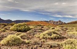 Dal av vulkan Teide Royaltyfria Bilder