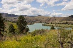dal för 2 Green River Royaltyfri Fotografi