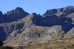 dal för bergpartacuapyrenees tena Royaltyfri Foto