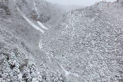 Dal för blå måne, Shangrila, Yunnan, Kina fotografering för bildbyråer