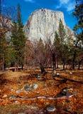 Dal för El Capitan Yosemite Arkivfoto