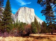 Dal för El Capitan Yosemite Royaltyfria Foton