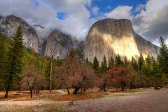 Dal för El Capitan Yosemite Arkivbild