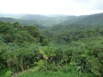 Dal för El Yunque Royaltyfri Bild