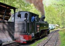 dal för england järnväg severn ångadrev arkivbild