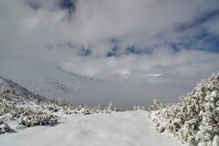 Dal för höga berg som täckas av snö Royaltyfri Foto