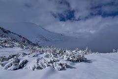 Dal för höga berg som täckas av snö Arkivbilder