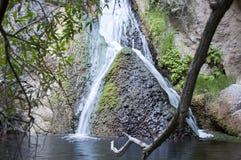 dal för Kalifornien darwin dödfalls Royaltyfri Foto