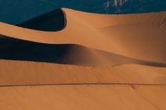 dal för sand för nationalpark för döddynmesquite Arkivbilder